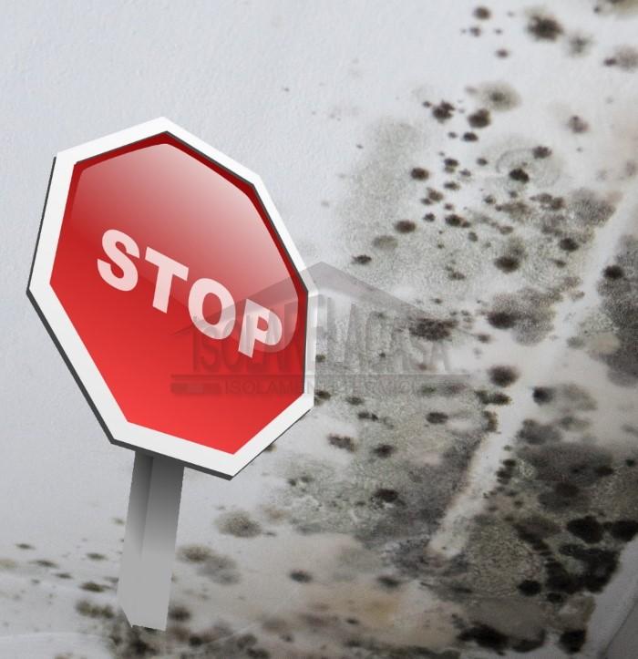 stop alla muffa per sempre
